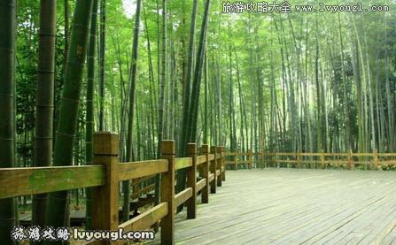 中国12大竹海风景名胜旅游景点介绍
