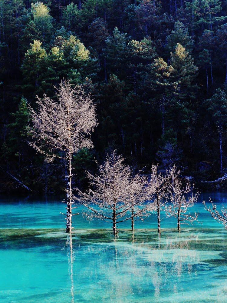 镜头下的美丽中国 最美风景照片分享