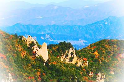 涉县九峰山森林公园_河北森林景点有哪些 河北森林公园哪好玩