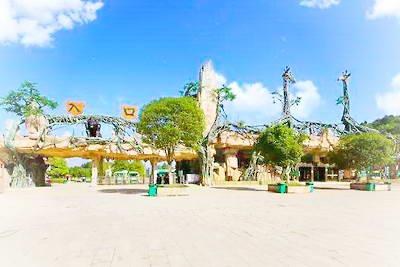 贵阳森林野生动物园*图片