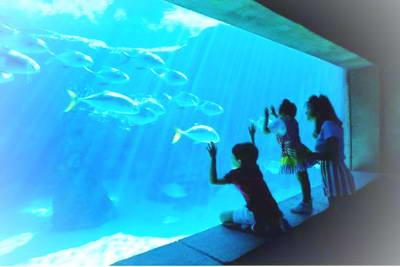 石家庄动物园海洋馆!